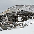 Larson Stone Hut 1903, Paulette Island, Antarctic Peninsula by Coreena Vieth