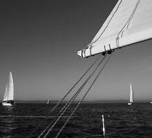 Sailing in San Francisco Bay. The Race 2011 by Igor Pozdnyakov