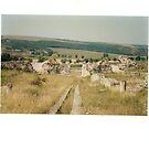 Histria Ruins Romania by Judy Woodman