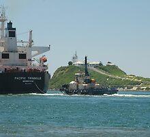 PACIFIC TRIANGLE CARGO SHIP - Newcastle NSW Australia by Phil Woodman