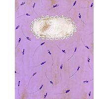 lavender blossoms  Photographic Print