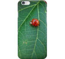 Ladybug #2 iPhone Case/Skin