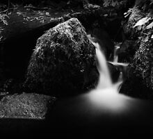 Pieces of Pacific Crest Falls I · Monochrome by Tula Top