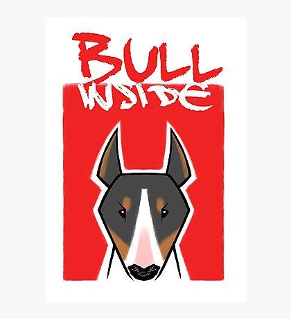 Bull inside Photographic Print