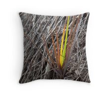 Dried surroundings Throw Pillow