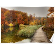 Fall in Wetland Poster