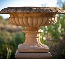 Large Bird Bath by ebonyjaynephoto