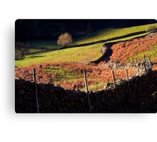 Last Light - Langdale - The Lake District Canvas Print