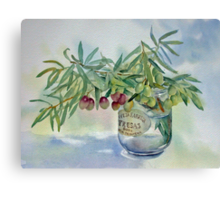 Olive branches in a jar Canvas Print