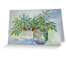 Olive branches in a jar Greeting Card