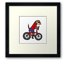 Funny Ferret Riding Bicycle Art Framed Print