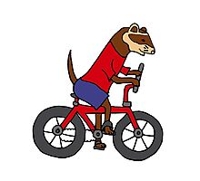 Funny Ferret Riding Bicycle Art Photographic Print