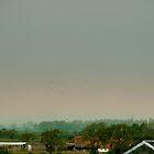 horizontal rainbow by Bob Leckridge