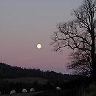 Full moon by Bob Leckridge