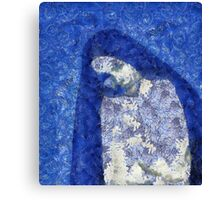 Blue Nun Canvas Print