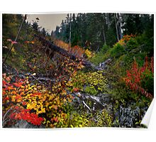 The Colors Of Fall ~ Oregon Cascades ~ Poster