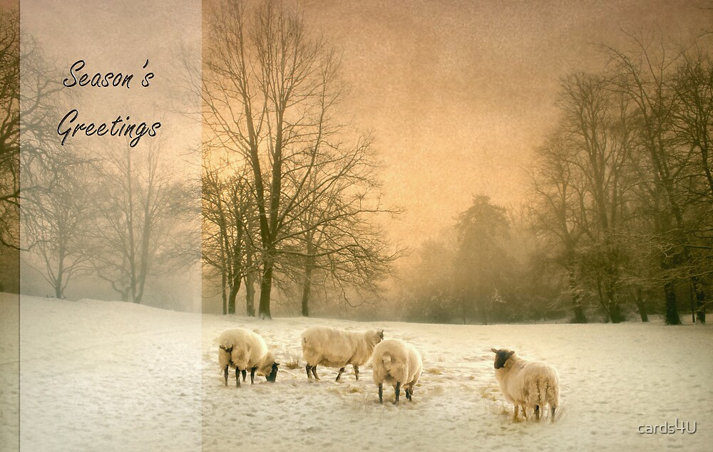 Winter's eve by cards4U