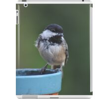 Chickadee perched on the edge of a flower pot iPad Case/Skin