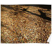 Leaves,Leaves,Leaves Poster