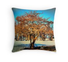 Winter Radiance  Throw Pillow