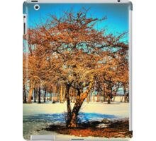Winter Radiance  iPad Case/Skin