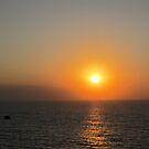 Sunset in Puerto Vallarta with a Frigate Bird, Mexico - puesta del sol by PtoVallartaMex