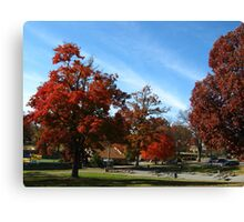 Fall Series 32 Canvas Print