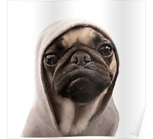 COOL PUG DOG - HIP HOP STYLE Poster
