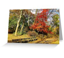 Central Park in Autumn, New York City  Greeting Card