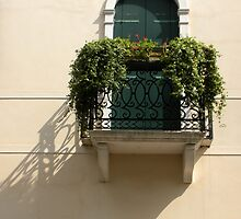 Balcony with Flowers by Michele Filoscia