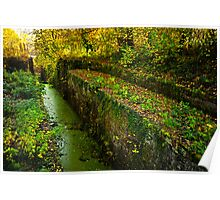 Disused Canal, 14 Locks, Rogerstone Poster