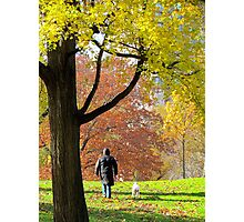 Autumn trees, New York Central Park Photographic Print