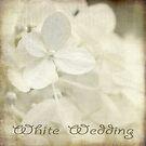 White Wedding by Christine Annas
