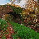 Stone Bridge by Ciaran Sidwell