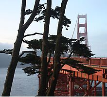 Golden Gate Bridge from the Oceanside Walk. 2011 Photographic Print
