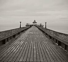 Clevedon Pier 1 by Emily Humphries