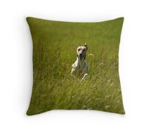 Hooray! It'sSpring! Throw Pillow
