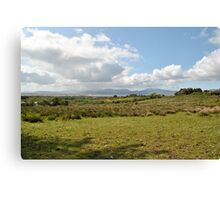 Rain on Dingle Bay, Sun in the Meadow Canvas Print
