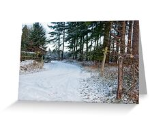 Snow Covered Forest Road Greeting Card