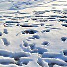 Snow Playground by DearMsWildOne