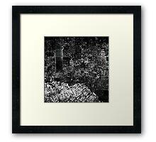 Landfill II Framed Print