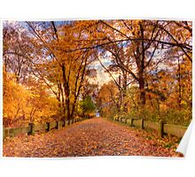 Spectacular fall solitude Poster