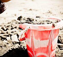 Building Sand Castles  by scottseldon