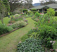 Grass Path (South Coast, NSW) by Lunaria