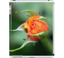 Rose Bud iPad Case/Skin
