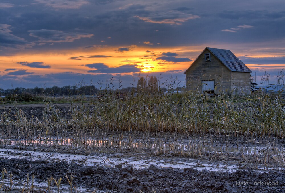 Harvest is Over by Dale Lockwood