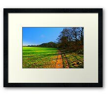 The Teesdale Way Trail, Low Coniscliffe, England. November Sun. Framed Print
