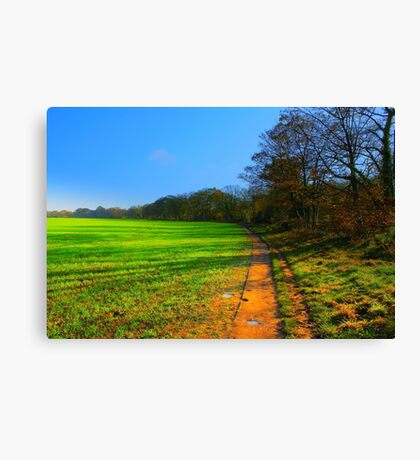 The Teesdale Way Trail, Low Coniscliffe, England. November Sun. Canvas Print