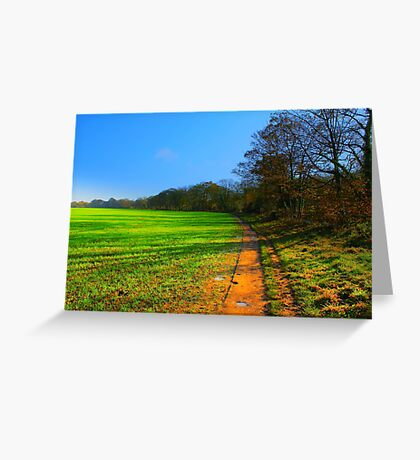 The Teesdale Way Trail, Low Coniscliffe, England. November Sun. Greeting Card