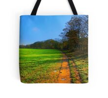 The Teesdale Way Trail, Low Coniscliffe, England. November Sun. Tote Bag